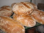 Country French Boule and Batard loaves